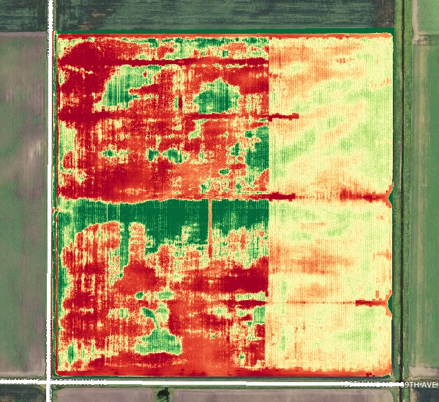 plant health NDVI dronedeploy
