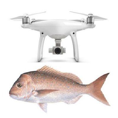 Phantom 4 Pro Bait Dropper gannet bait release