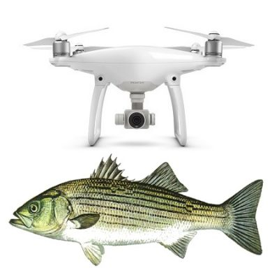 Bait dropper to suit phantom 3 phantom 4 and mavic pro for Fishing drone for sale