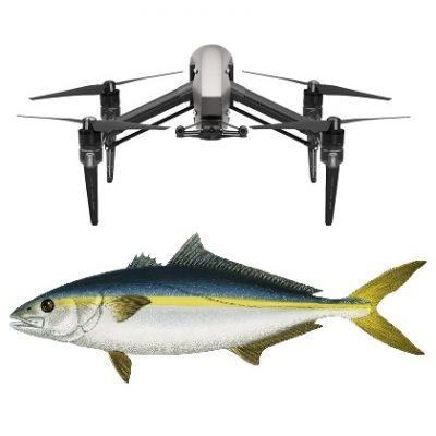 DJI Inspire 2 bait dropper fishing drone